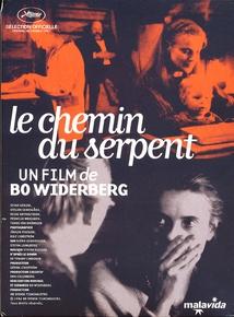 LE CHEMIN DU SERPENT