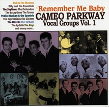 REMEMBER ME BABY (CAMEO PARKWAY VOCAL GROUPS VOL.1)