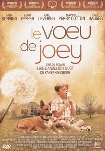 LE VOEU DE JOEY