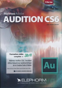 AUDITION CS6