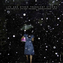 LIFE AND OTHER TRANSIENT STORMS