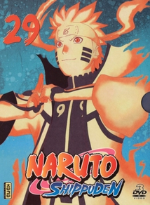 NARUTO SHIPPUDEN - 29