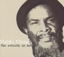 REBIRTH IN DUB (THE)