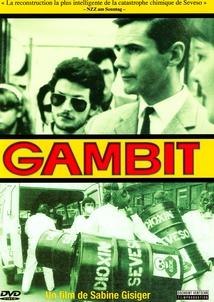 GAMBIT, LA VÉRITÉ SUR L'ACCIDENT DE SEVESO