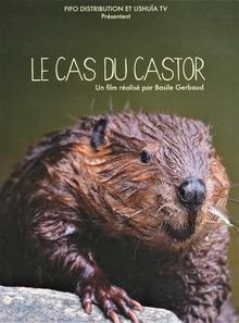 LE CAS DU CASTOR