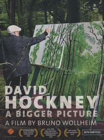 DAVID HOCKNEY : A BIGGER PICTURE