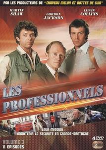 LES PROFESSIONNELS - 3