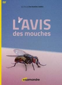 L'AVIS DES MOUCHES