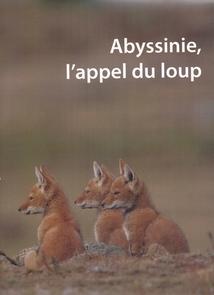 ABYSSINIE, L'APPEL DU LOUP