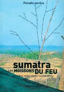 SUMATRA, LES MOISSONS DE FEU
