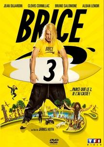 BRICE - 3