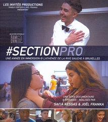 SECTION PROFESSIONNELLE