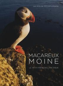 MACAREUX MOINE, LE PETIT FRÈRE DE L'ARCTIQUE
