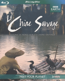 LA CHINE SAUVAGE