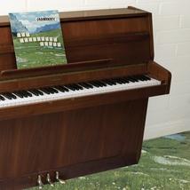 THE SOPHTWARE SLUMP...ON A WOODEN PIANO