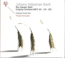 DU TREUER GOTT LEIPZIG CANTATAS BWV 101,115,103