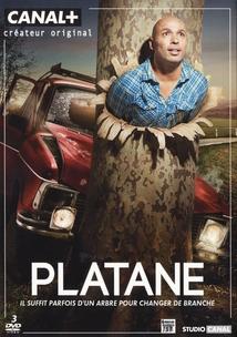 PLATANE - 1