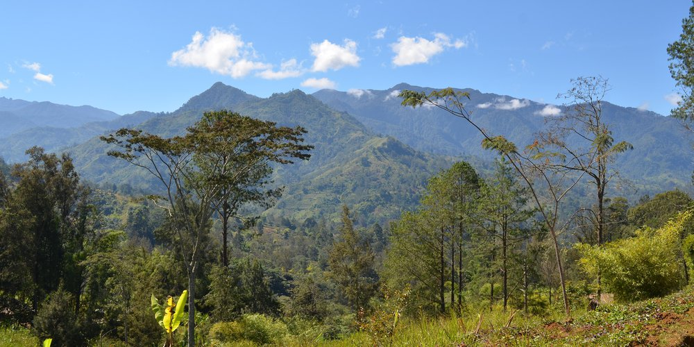 Les Highlands de la Papouasie-Nouvelle-Guinée, une photo de eGuide Travel (wikicommons)
