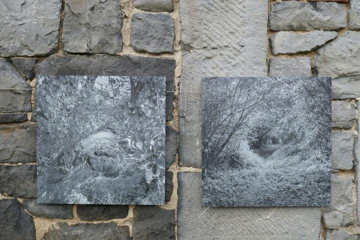 Biennale Jacky Lecouturier.jpg