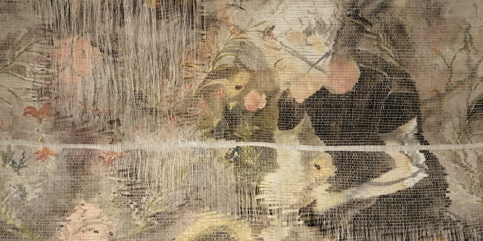 Botanique - 20210617 - Elise Peroi  (3).jpg