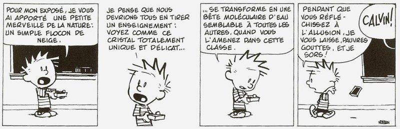 Calvin et Hobbes 3