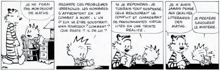 Calvin et Hobbes 5