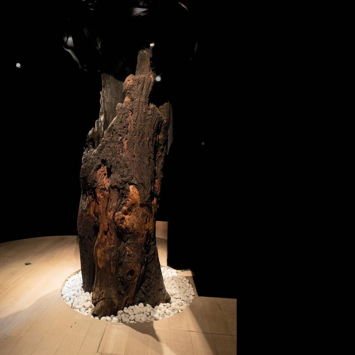 Musée de la Vie wallonne -Liège 1bis - Céline Bataille