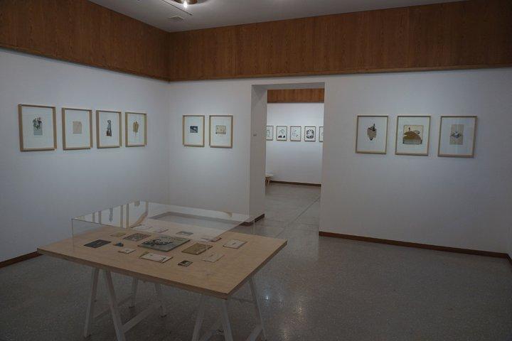 Emelyne Duval à la Maison Losseau  exposition À petits pas