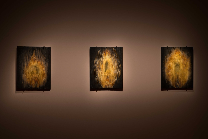 Fabrice_Samyn_ Burning_is_shining © Lola Pertsowsky.jpg