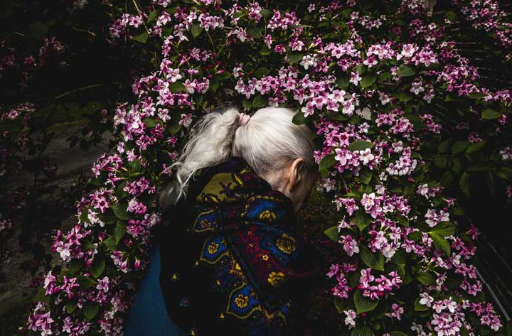 Home - photo (c) Lionel Jusseret
