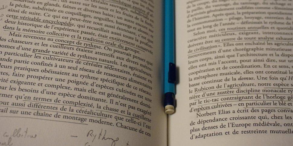 Homo domesticus - (c) James C. Scott - La Découverte - notes