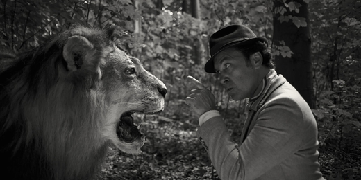 Lion belge; le (5) (Parlaku).jpeg