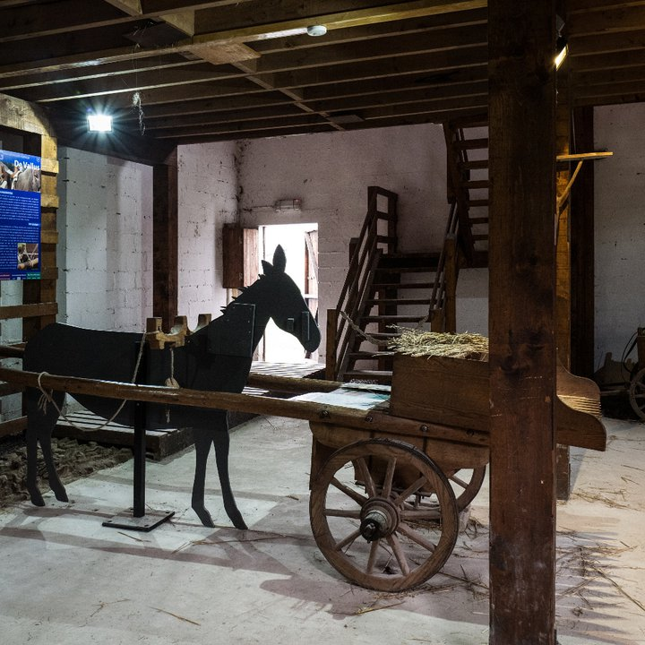 Malagne - Archéoparc de Rochefort  (c) Céline Bataille 5