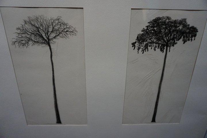 exposition Nous les arbres - oeuvres de Cesare Leonardi et Franca Stagi