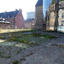Nature en ville (Liège)