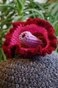 tricotez vous 2