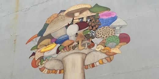 Sara Riel - Mushroom - Reykjavik - photo Wiredforlego (creative commons)