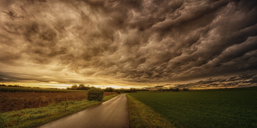 Road to Hellman.jpg