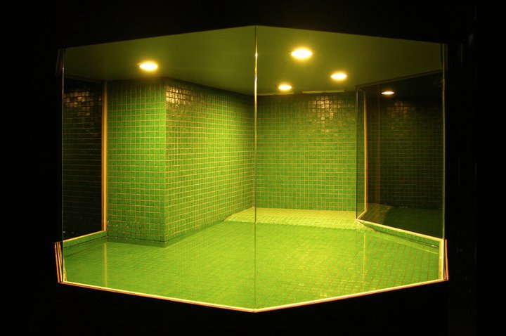 Wesley Meuris - Cage for Pelodiscus Sinensis - 2006