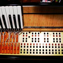 accordeons balkans