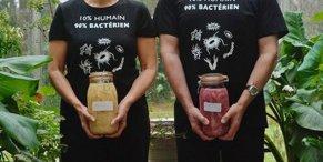 bacteria mundi