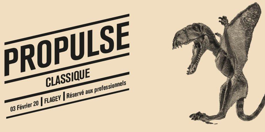 ProPulse 2020