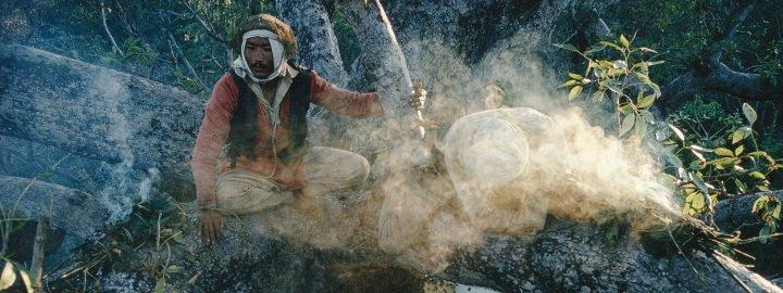 chasseurs de miel