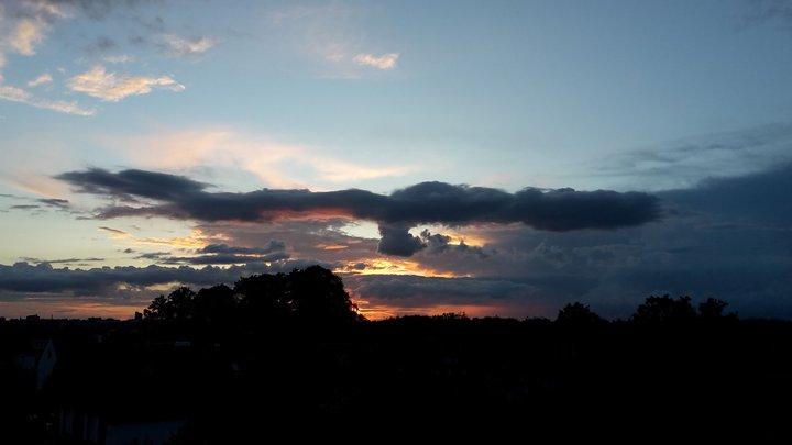 ciel dragon oiseau.jpg