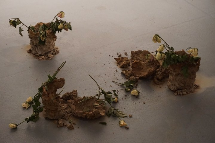 "expo ""Nature morte, nature vivante"" - oeuvre d'Erine Wyckmans"