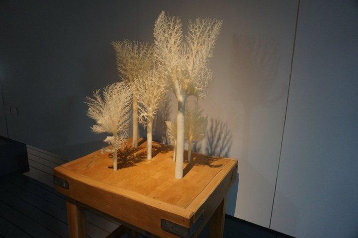 "expo ""Nature morte, nature vivante"" - oeuvre d'Alexi Williams Wynn"
