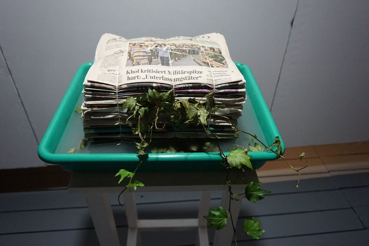 "expo ""Nature morte, nature vivante"" - oeuvre de Lois Weinberger"