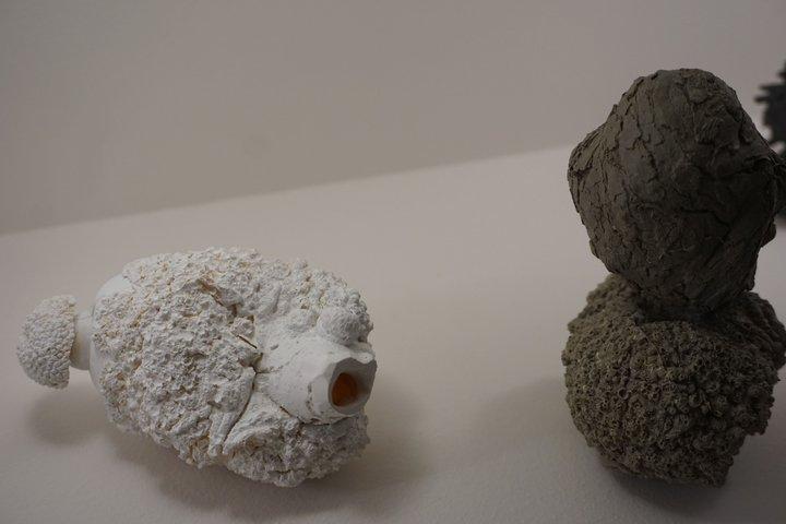 "exposition Memento BAM, Mons - Arnaud Sprimont, ""Microbiota"""