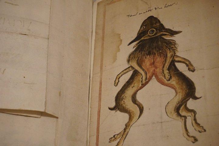 exposition Memento, BAM Mons - manuscrit Jérôme Van Winghe
