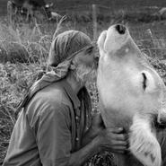 Réenchanter notre lien au monde en explorant nos relations aux animaux